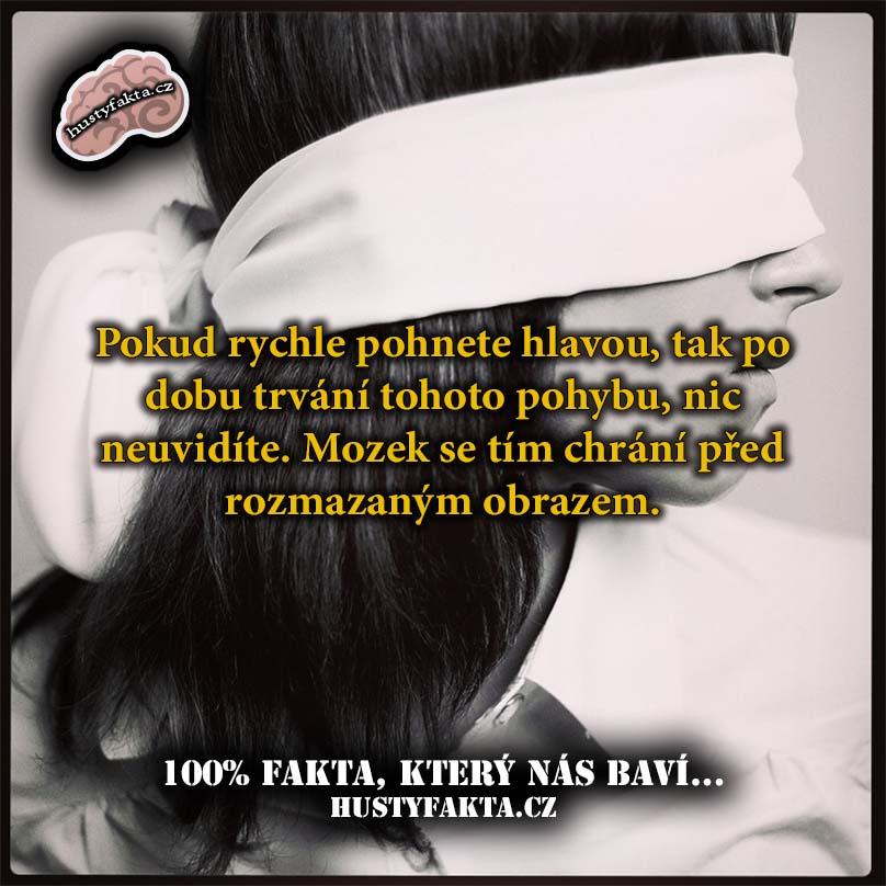Fakt79
